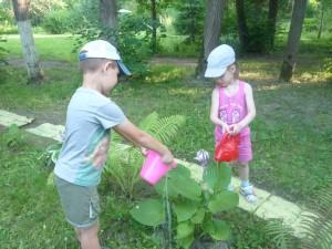 труд детей в природе
